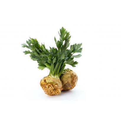 Celery new