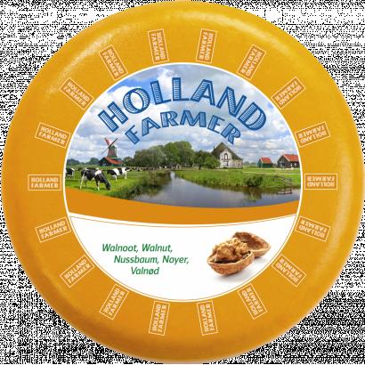 Holland farmer gouda with walnut