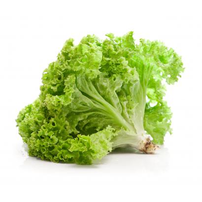 Tölgylevél saláta