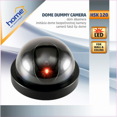 Dummy security camera with motion detector