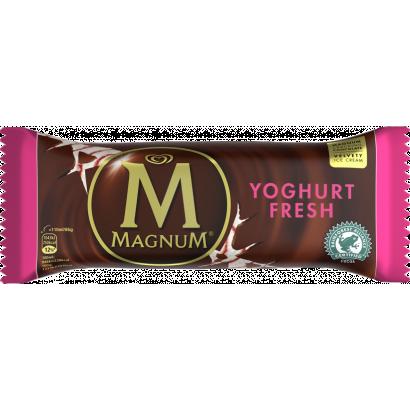 Magnum Mini Multipack Dupla Csokoládé és Dupla Karamell jégkrém 6 x 60 ml